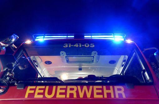 Die Feuerwehr konnte den Brand schnell unter Kontrolle bringen. (Symbolfoto) Foto: dpa