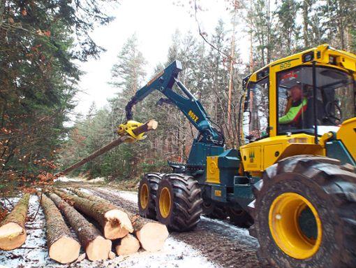 Ein Forstspezialschlepper bugsiert gefällte Stämme auf eine Beuge neben dem Waldweg. Foto: Schnurr