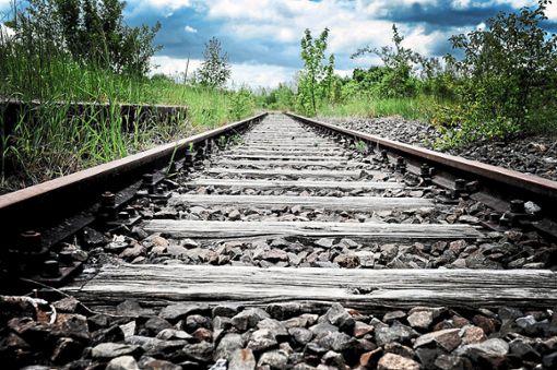 Könnte irgendwann auf der geplanten Strecke der Hermann-Hesse-Bahn eine Express-S-Bahn fahren? Das soll nun untersucht werden. Foto: Archiv: Fritsch