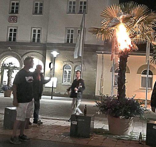 Mit einer Bierdose in der Hand verlässt der Brandstifter die brennende Palme.   Foto: Privat Foto: Schwarzwälder Bote