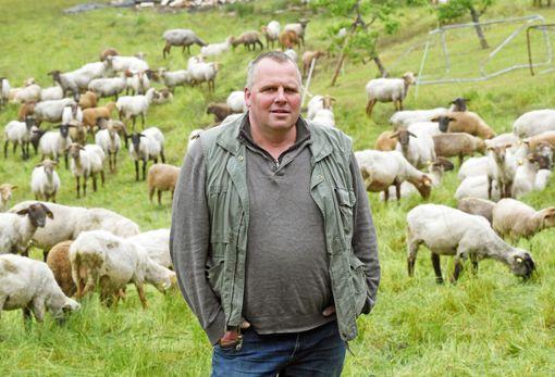 Der Schafhalter Gernot Fröschle steht auf einer Wiese an einem Teil seiner Schafherde.  Foto: dpa