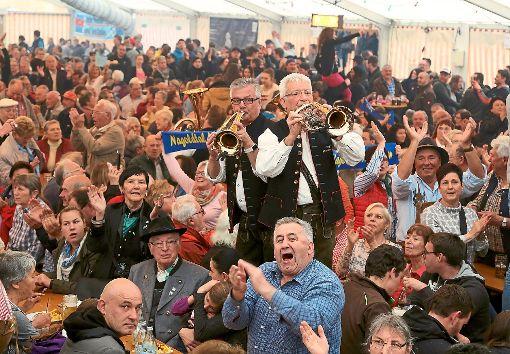 Die Nagoldtalmusikanten füllten gestern beim Vollmaringer Frühlingsfest einmal mehr das Zelt.  Foto: Priestersbach Foto: Schwarzwälder-Bote