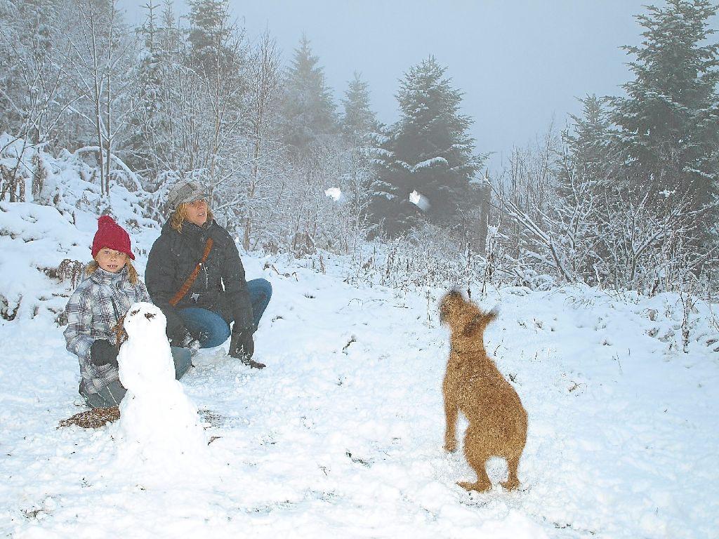 Bad Herrenalb Schnee