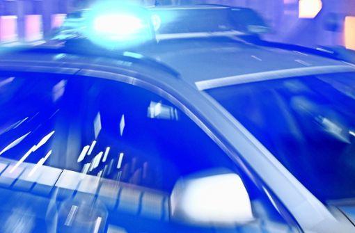 Ein Streifenfahrzeug des Polizeireviers Calw geriet am Sonntag gegen eine Leitplanke. (Symbolfoto) Foto: dpa