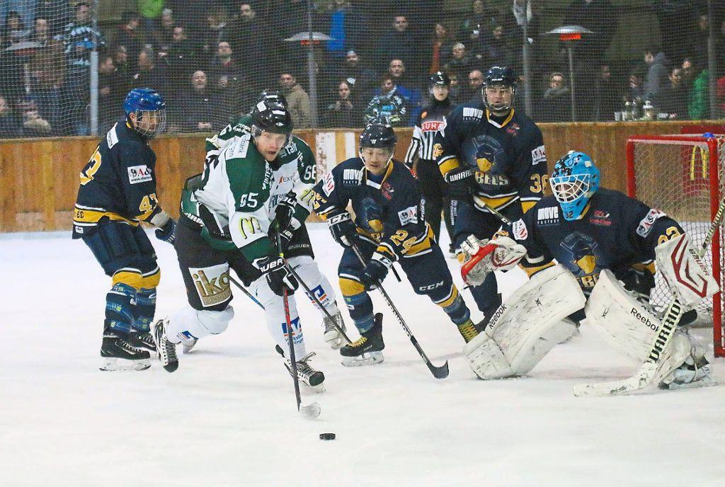 1 eishockey bundesliga