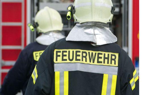 Die Feuerwehr konnte das Feuer unter Kontrolle bringen. (Symbolfoto) Foto: dpa-Zentralbild