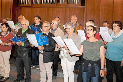 Souverän dirigiert Irina Hilser die Chorgemeinschaft Nußbach, die  mit vierstimmigen Liedern die Gläubigen erfreut.   Fotos: Kienzler Foto: Schwarzwälder Bote