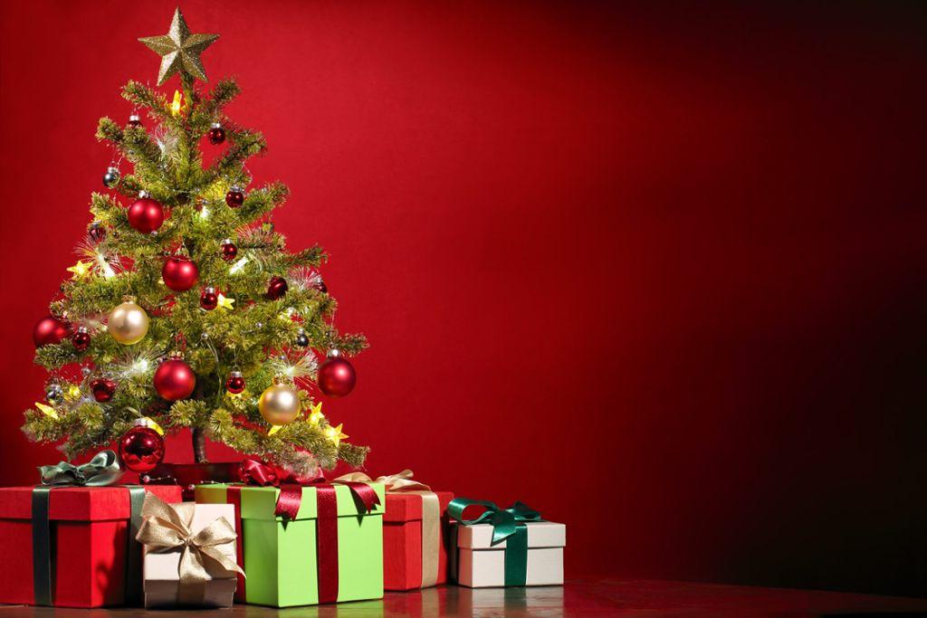 Weihnachten: So kommt der Christbaum per Post - Nachrichten ...