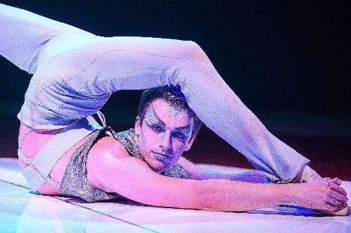 Auch Artisten gehören  zum Programm des Circus Belly-Wien, der in Baiersbronn gastiert.  Foto: Circus Belly-Wien Foto: Schwarzwälder-Bote
