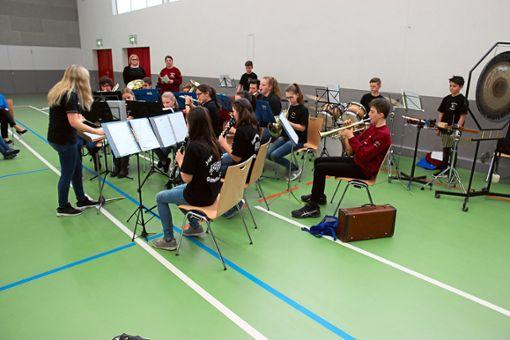 Den Auftakt des Vorspielnachmittags in Göttelfingen macht die Jugendkapelle Göttelfingen-Baisingen unter der Leitung von Corinna Jöchle.  Foto: Feinler Foto: Schwarzwälder Bote