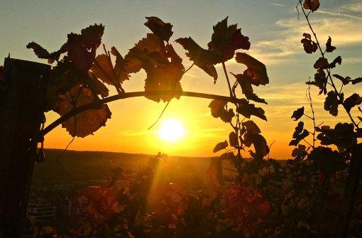 Nicht nur verregnet und kalt: Der Herbst hat auch seinen schönen Seiten, wie unsere Leserfotos zeigen. Foto: Leserfotograf toller-ede