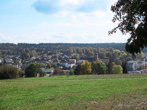 In Langenbrand gibt es gute Luft – und einen guten Blick über Schömberg.  Foto: Schneider Foto: Schwarzwälder Bote