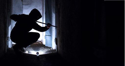 Die Einbrecher wurden von einer Nachbarin beobachtet. (Symbolfoto) Foto: Stein/dpa