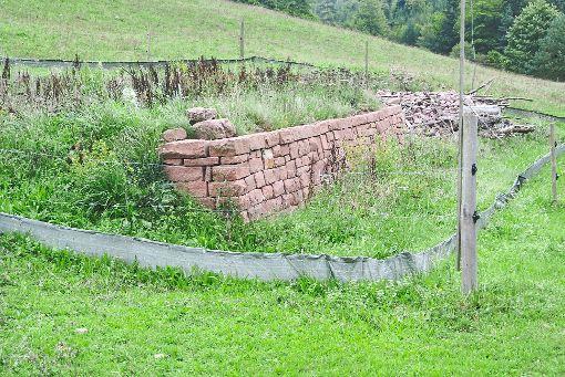 Die neuen Trockenmauern wirken noch etwas fremd inmitten der Landschaft, doch  Eidechsen und Co. scheinen ein neues Zuhause gefunden zu haben.  Foto: Braun Foto: Schwarzwälder-Bote