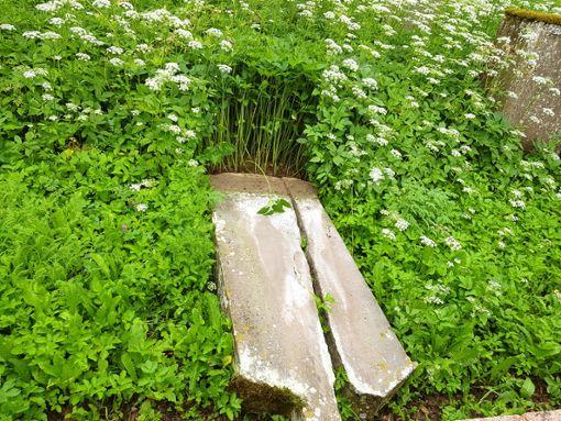 Die Täter stießen einen Grabstein um.  Foto: Kiris-Bau
