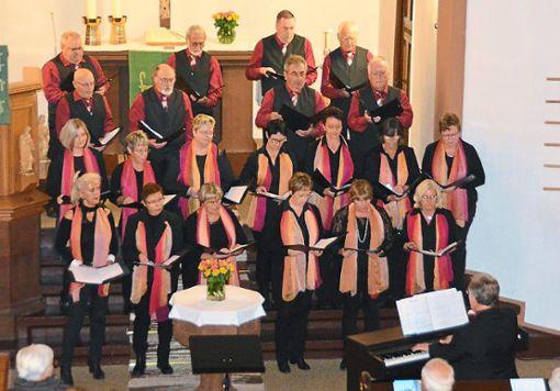 Der Chor Ohrwurm ist das Aushängeschild des Meßstetter Gesangvereins.   Foto: Dürrschnabel Foto: Schwarzwälder Bote