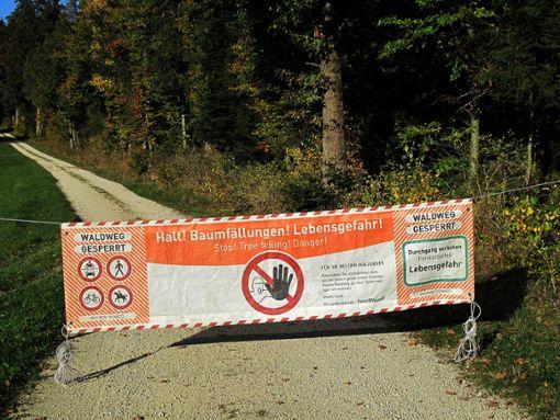 Banner warnen zurzeit davor, bestimmte Waldwege im Kreis zu betreten.  Foto: Gauggel