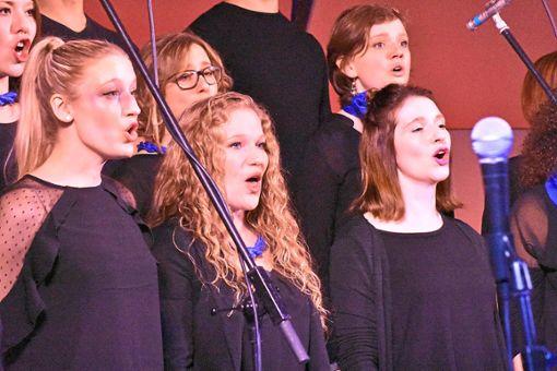 Ein sattes Klangvolumen und ein vielseitiges Programm bietet der Gospellandeschor.   Fotos: Weisser Foto: Schwarzwälder Bote