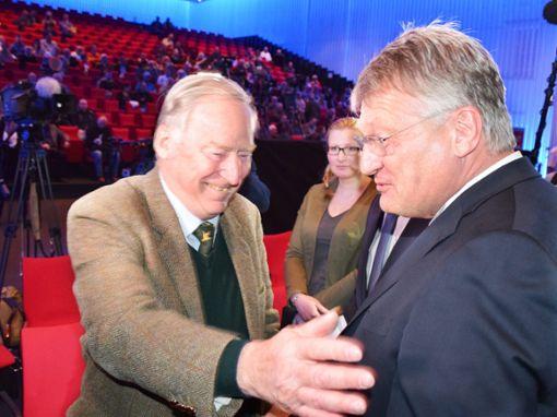 Alexander Gauland (links) und Jörg Meuthen  beim Europa-Wahlkampf-Start in Offenburg. Foto: Braun