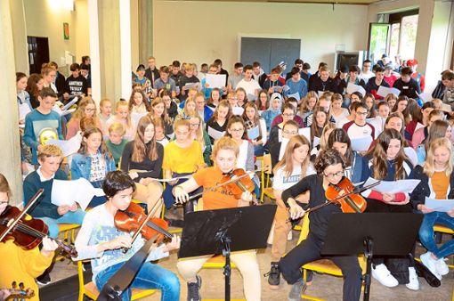 Die Musizierenden des AMG bereiten sich hochmotiviert auf den Konzertabend vor.  Foto: Schule Foto: Schwarzwälder Bote