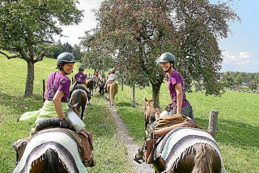 Wegen der  guten Resonanz in den vergangenen Jahren veranstaltet der Farrenhof wieder ein Reitertreffen. Foto: Farrenhof