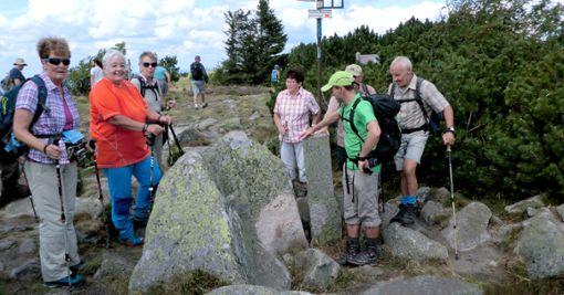 Unterwegs in den Vogesen waren Wanderer des Schwarzwaldvereins.  Foto: Schwarzwaldverein Foto: Schwarzwälder Bote