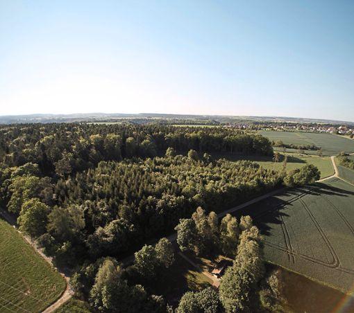 Bei Ahldorf soll ein Gewerbegebiet entstehen. Foto: Geiger