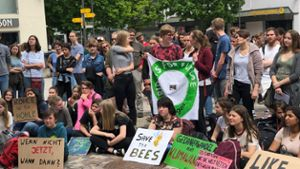 Balingen: Fridays for Future-Demo nach Unterrichtsende