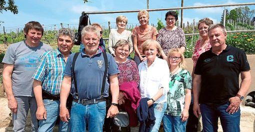 Der Jahrgang 1958 erkundet die Weinberge bei Esslingen.   Foto: Weisser Foto: Schwarzwälder Bote