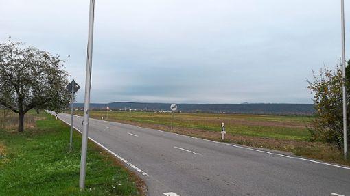 Der Penny-Markt soll am Wurmlinger Ortsausgang in Richtung Hirschau auf der rechten Seite entstehen.  Foto: Begemann