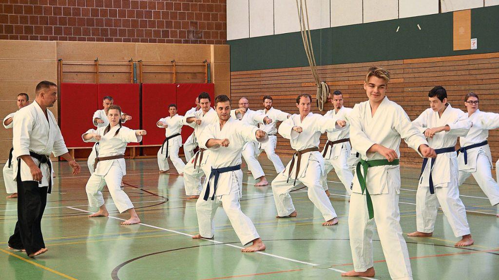 Balingen: Karate-Schüler erhalten profunden Unterricht - Schwarzwälder Bote - Schwarzwälder Bote