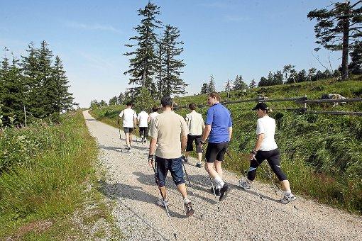 Eine Gruppe Nordic-Walker: Doch auch die Verkehrssituation im Nordschwarzwald soll nach dem Willen der Landesregierung verbessert werden.  Foto: Deck