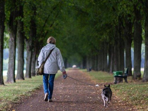 Hans-Jürgen Schneider empfiehlt Hundebesitzern, in der jetzigen Jahreszeit ihre Tiere anzuleinen und besonders gut aufzupassen. (Symbolfoto) Foto: dpa