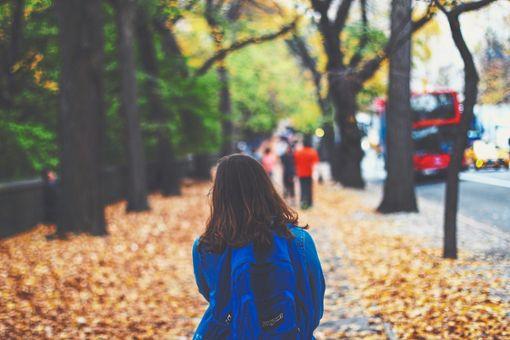 Im Kreis häufen sich die Fälle, in denen Unbekannte Kinder ansprechen, bedenklich. (Symbolbild) Foto: pixabay