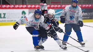 Toller Start der jungen Wild Wings