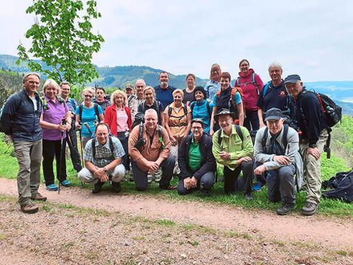Wanderer des Schwarzwaldvereins Bad Liebenzell sind  im Prech- und Elztal um südlichen Schwarzwald unterwegs gewesen.   Foto: Verein Foto: Schwarzwälder Bote