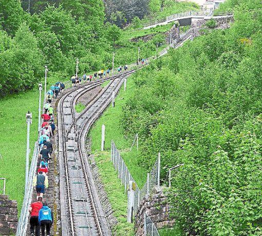 Auf 1987 Stufen geht es entlang der Bergbahn auf den Sommerberg.  Foto: Veranstalter