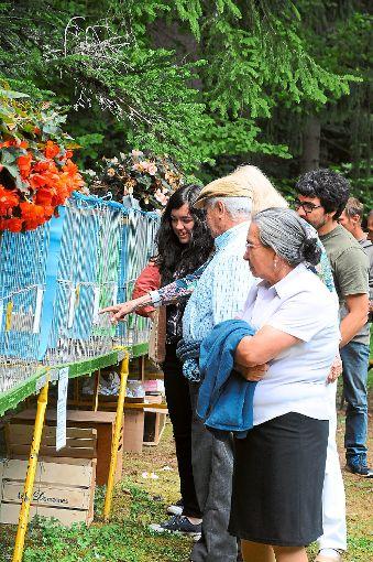 Ein internationales Publikum interessierte sich für den Sängerwettstreit beim Geflügler-Waldfest. Foto: Schwarzwälder-Bote