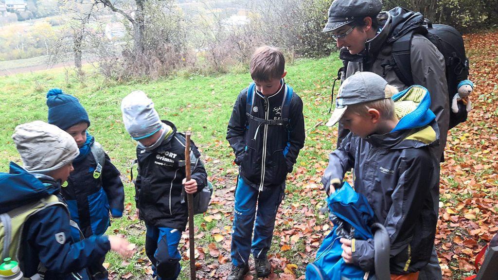 Wildberg: Fledermaushöhle weckt die Neugier - Schwarzwälder Bote - Schwarzwälder Bote