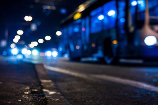 Der Gesuchte saß im Fernreise-Bus nach Rumänien. (Symbolfoto) Foto: Georgii Shipin/ Shutterstock