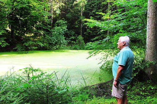 Fotos: Steinmetz Foto: Schwarzwälder Bote