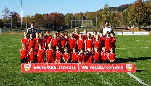 Zum  zweiten Mal veranstaltet die Fußballschule des VfB Stuttgart  Wochenendcamp in Pfeffingen. Das Bild entstand bei der Premiere im vergangenen Jahr.  Foto: Archiv Foto: Schwarzwälder Bote