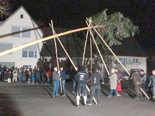 Zahlreiche Zuschauer verfolgten das Aufstellen des Narrenbaums nach alter Tradition.  Foto: Pfeffer Foto: Schwarzwälder Bote