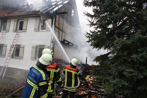 Die Brandursache war zunächst unklar. Foto: Bartler-Team