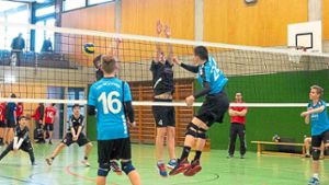 Volleyball: U17-Volleyballer des TSV Rottweil spielen um Bezirksmeistertitel