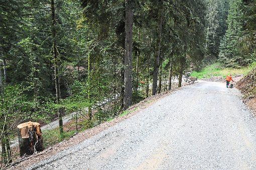 Die Umgehungsstrecke durch den Wald ist 2,8 Kilometer lang.  Foto: Ziechaus Foto: Schwarzwälder-Bote