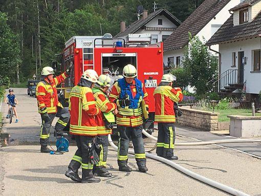 Für den Ernstfall gerüstet ist die Feuerwehr Hammereisenbach.     Foto: Feuerwehr Foto: Schwarzwälder Bote
