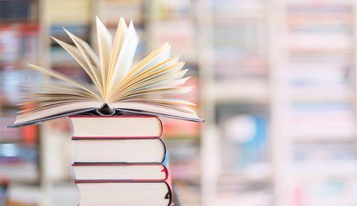 Immer wieder kommt es vor, dass schmutzige oder auch kaputte Bücher ins Regal gestellt werden. (Symbolfoto) Foto: © Kara – stock.adobe.com