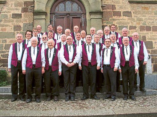 Der damals noch allein singende Männergesangverein Liederkranz Empfingen im Jahr 2011 mit Dirigent Uwe Wagner (Dritter von rechts) feiert in diesem Jahr sein 150-jähriges Bestehen. 2013 wurde dann die Chorgemeinschaft Empfingen/Mühlheim gebildet. Beide Vereine sind weiterhin selbstständig.  Archiv-Foto: Gaus Foto: Schwarzwälder-Bote