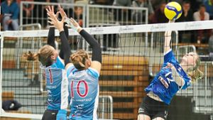 Volleyball: Fleißige Co-Trainerin Martina Sias
